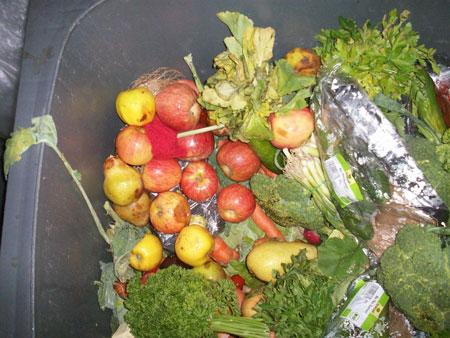 Verdorbenes und frisches Obst und Gemüse